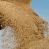 areia fina para reboco